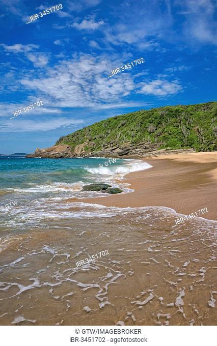 Praia das Caravelas beach, Armação dos Búzios, Rio de Janeiro State, Brazil