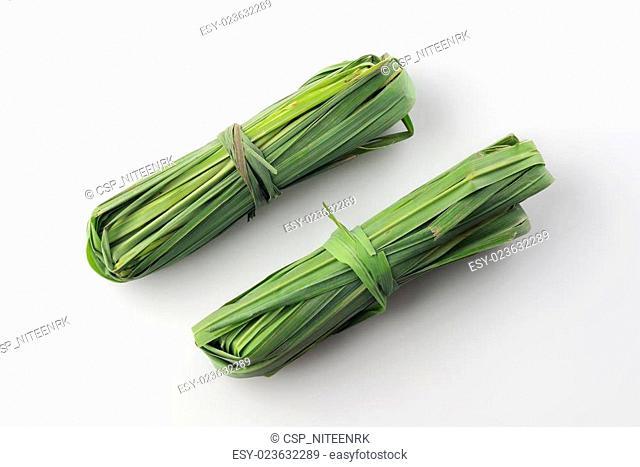 Fresh Green Lemon Grass
