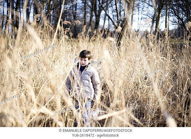 Portrait of child in canes on the beach of the lake in winter, Lake Maggiore, Ispra, Italy