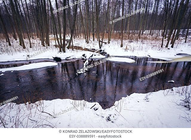 Lutownia river, tributary of the Narewka river in Bialowieza Forest, Podlaskie Voivodeship of Poland