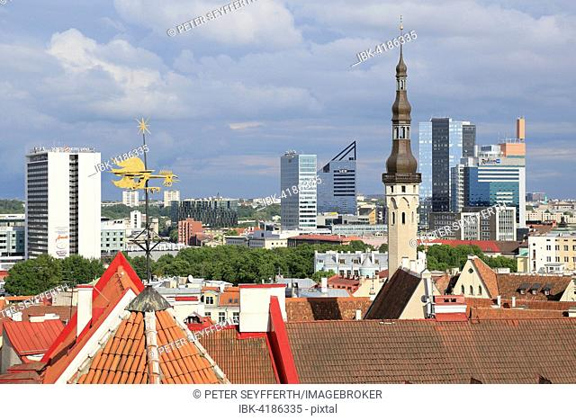 Tower of the city hall and high-rise buildings in the New Town, view from Kohtuotsa viewpoint in the Upper Town, Tallinn, Estonia