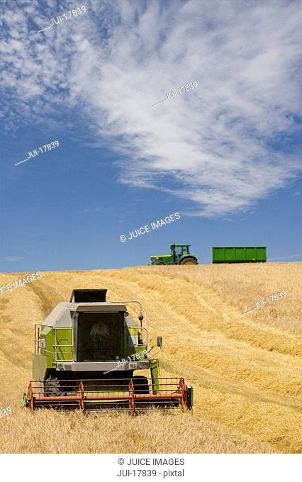 Harvester in barley field