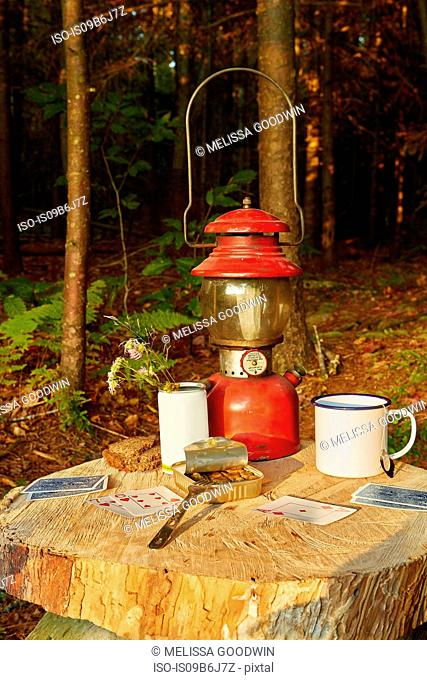 Playing cards, tinned sardines and tin cup on tree stump, Colgate Lake Wild Forest, Catskill Park, New York State, USA