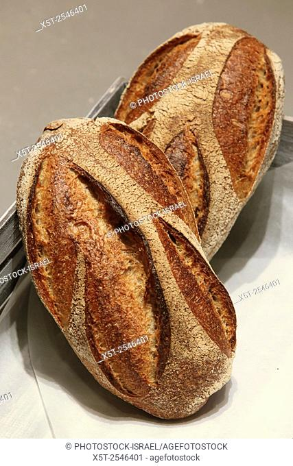 Freshly baked bread in a bakery