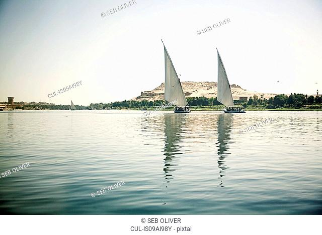 Felucca Boats River Nile, Egypt
