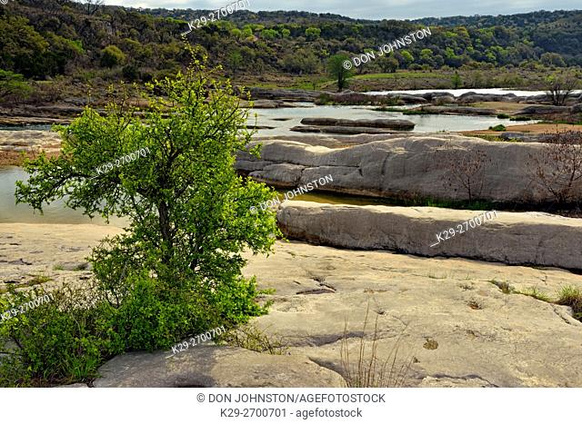 Pedernales River with exposed rocks and trees, Pedernales Falls State Park, Texas, USA