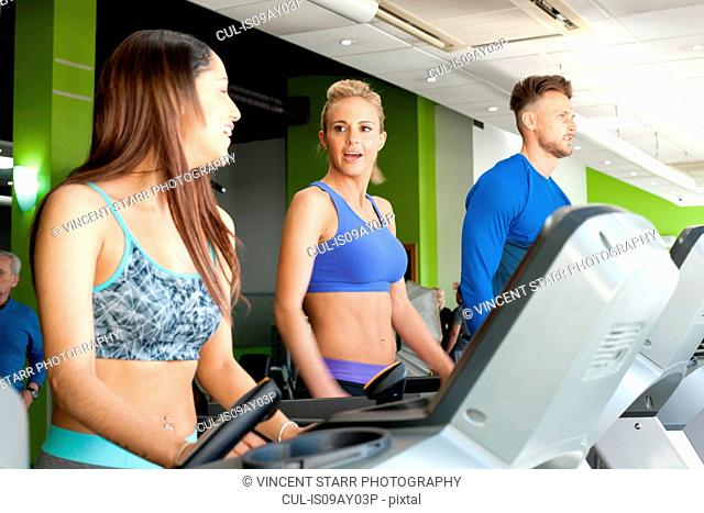 People at gym using exercise machines chatting