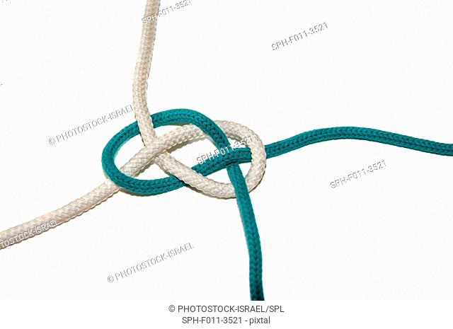 The Carrick Bend or The Josephine Knot AKA Sailor's Knot and Anchor Bend on white background Used to tie to lengths of rope together on white background