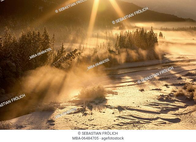 wintry nebulous mood in the back light of the setting sun in the Isar meadows near Wallgau