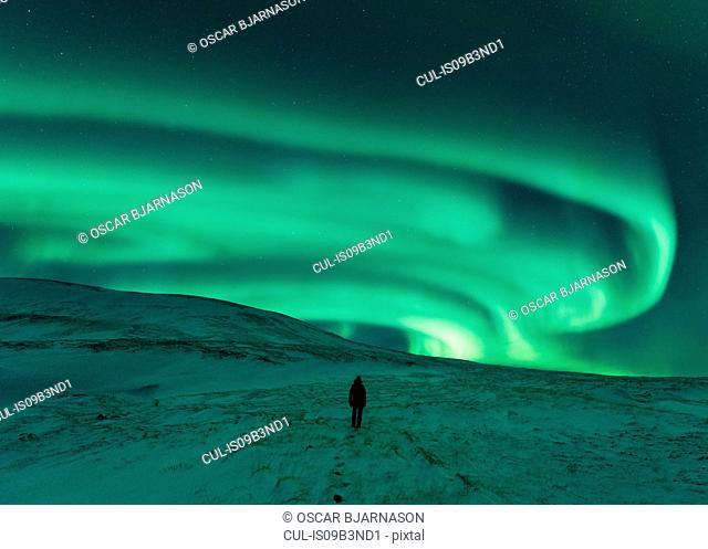 Person walking under aurora borealis at night, Thingvellir, Iceland