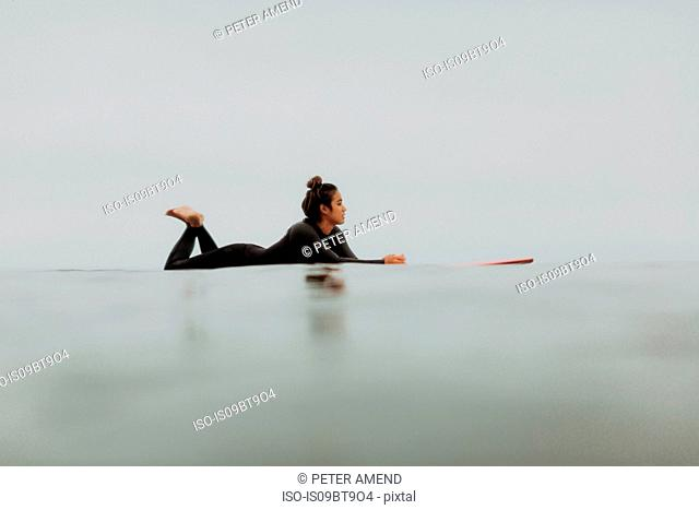 Young female surfer lying on surfboard in calm misty sea, Ventura, California, USA