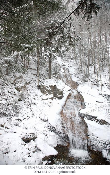 Franconia Notch State Park - Liberty Gorge Cascade during a snow storm in Lincoln, New Hampshire USA  This waterfall is located in the Flume Gorge along Cascade...