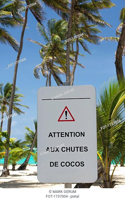 Low angle view of warning sign against palm trees at beach, Guadeloupe, France