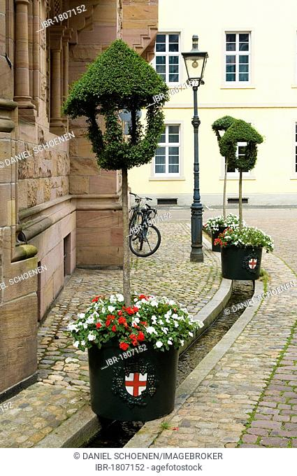 Historic district with Baechle, a small water-filled runnel, Freiburg im Breisgau, Baden-Wuerttemberg, Germany, Europe