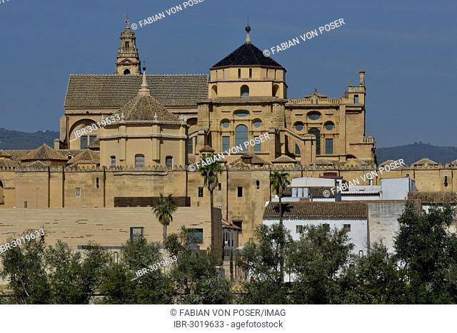 Mezquita, Mosque–Cathedral of Córdoba, Cathedral of the Conception of Our Lady