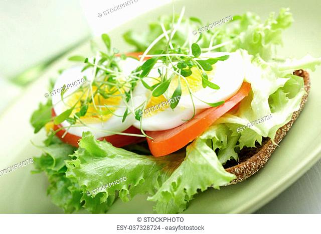 Healthy sandwich with lettuce, garden cress, boiled egg, tomato, and red onion on the rye bread. Shallow DOF
