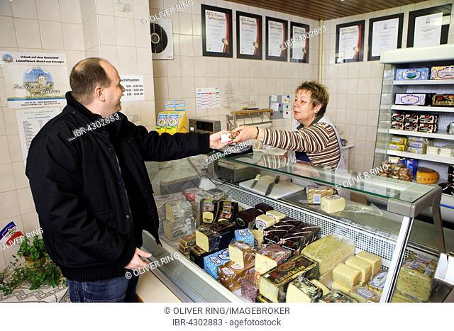 Woman selling cheese at the small shop of the Sarzbüttel fine cheese dairy, Sarzbüttel, Schleswig-Holstein, Germany, Düsseldorf