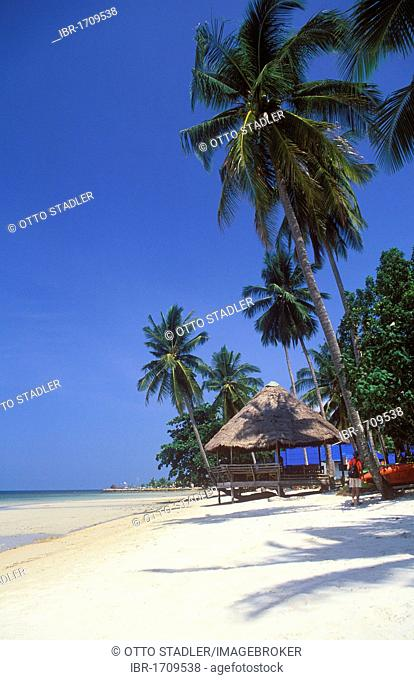 Restaurant on the beach, coconut palm trees, Kai Bae Beach, Koh Chang Island, Trat, Thailand, Southeast Asia