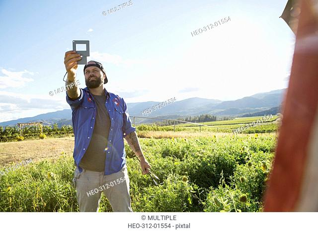Male painter holding frame in sunny rural field