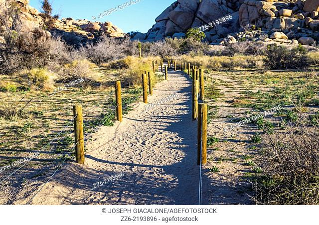 Fence posts at the start of the Barker Dam Trail. Joshua Tree National Park, California, United States