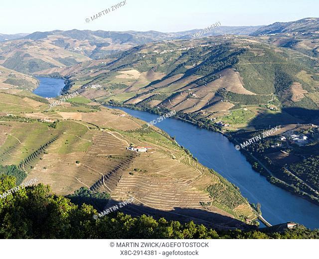 View over the valley of river Douro near Peso da Regua from Miradouro de S Leonardo em Galafura. The valley of river Douro