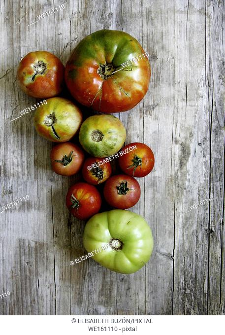 Image on different sizes of tomatoes