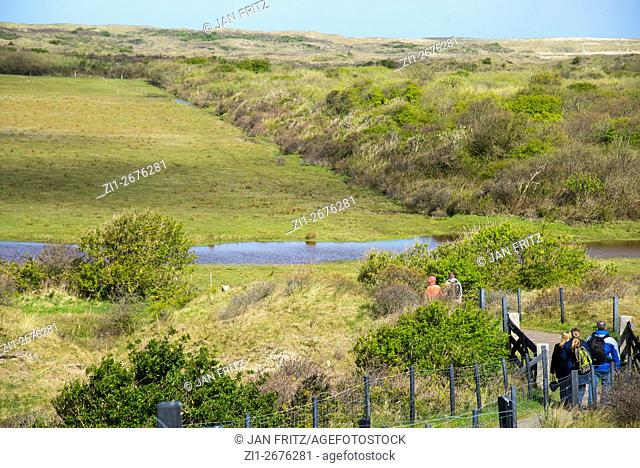 view at Muy National Park with dunes at Texel