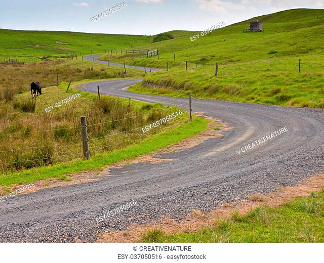 Winding road through New Zealand Countryside