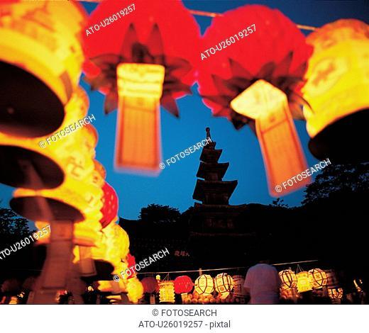 ritual, lantern, rite, ceremony, lotus lantern festival, night, light