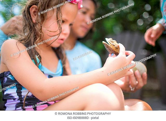Girl examining scallop