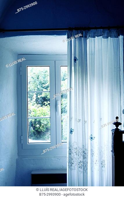 Tree seen from behind a window with a curtain. Santo-Pietro-di-Tenda, Corsica, France