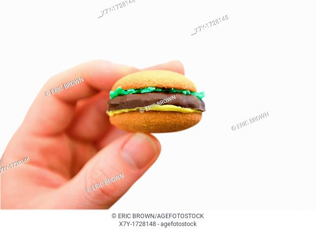 A hand holds a cookie that looks like a hanburger