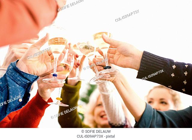 Family toasting at family Christmas party