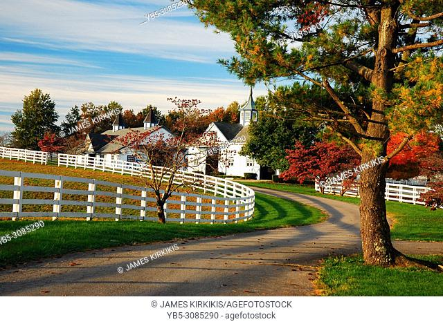 A meadering country road traverses a fall landscape in Kentucky's Blue Grass region