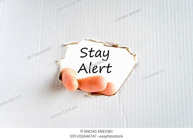 Stay alert text concept isolated over white background