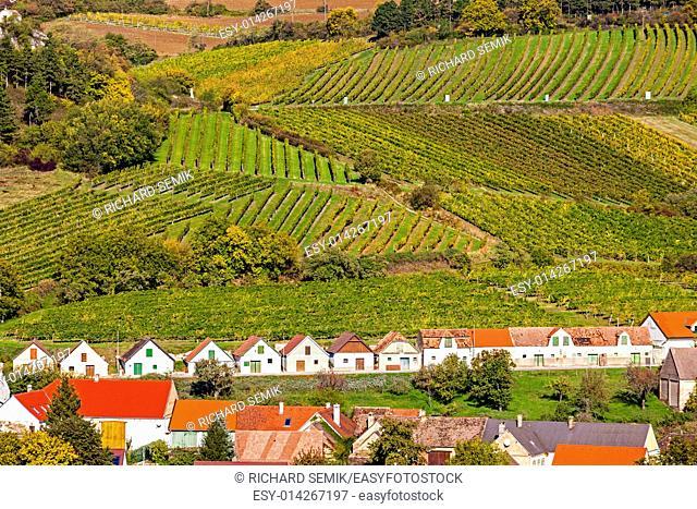 wine cellars with vineyards, Falkenstein, Lower Austria, Austria