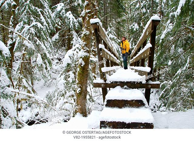 Riverside National Recreation Trail hiker bridge in winter, Clackamas Wild and Scenic River, West Cascades Scenic Byway, Mt Hood National Forest, Oregon