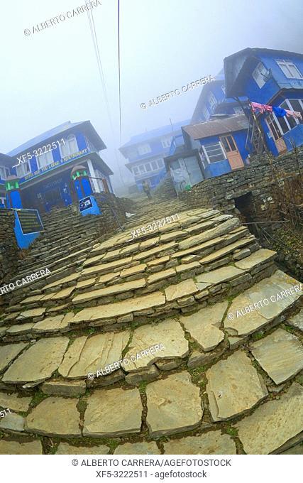 Rest Area, Small Village, Ghest House, Gorepani, Trek to Annapurna Base Camp, Annapurna Conservation Area, Himalaya, Nepal, Asia