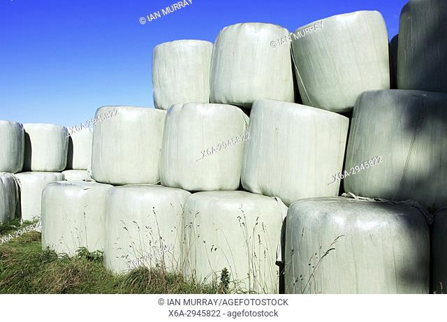 Silage bags piled up in field against blue sky, Suffolk, England, UK
