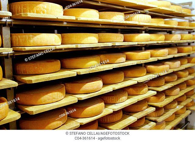 Raclette cheese production. Les Haudères, Sion, Evolène. Valais. Switzerland