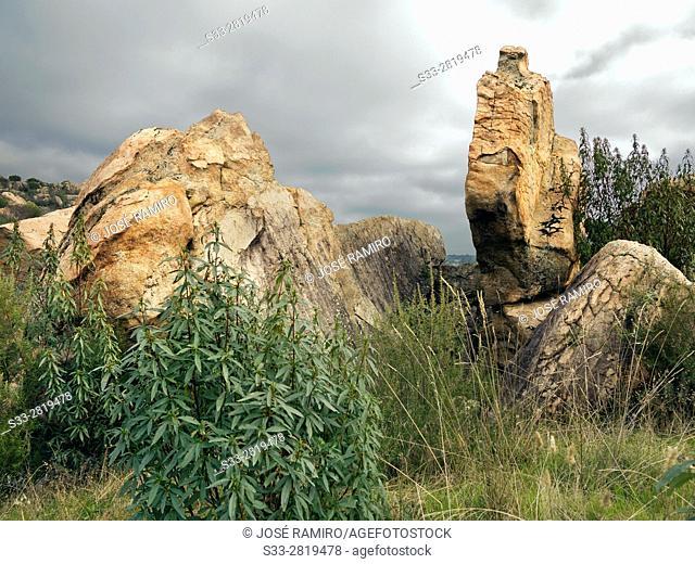 Granite in the Cuba hill. Cadalso de los Vidrios. Madrid. Spain. Europe