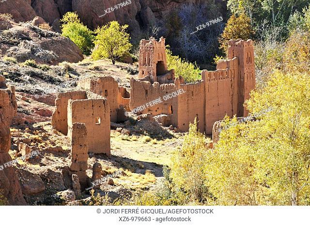 Doigts de singe, Monkey Fingers, Dades Valley, Ouarzazate province, Sous-Massa-Draa, High Atlas, Morocco, Africa, december 2009