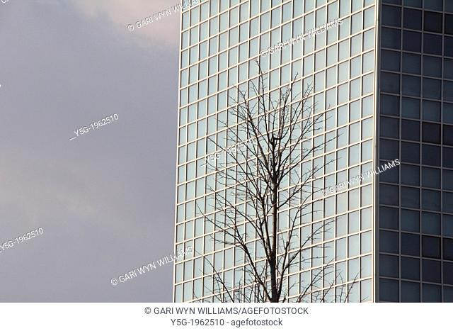 bare tree by office block in the eur district in rome italy