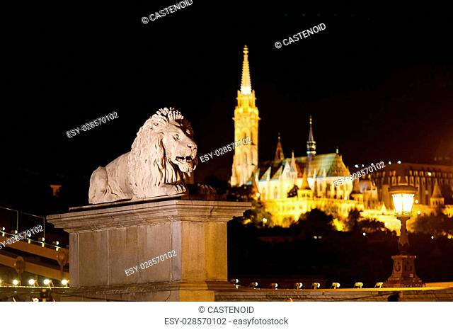 Statue of lion on the Chain bridge on the background Matthias church at night time