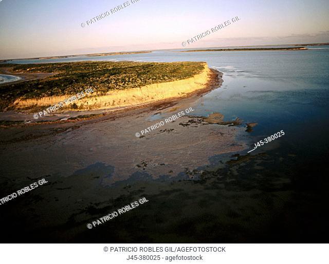 Laguna Madre. Tamaulipas. Mexico