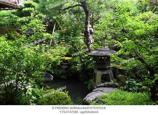 Nomura Samurai Family House garden in Nagamachi district of Kanazawa, Japan, Asia
