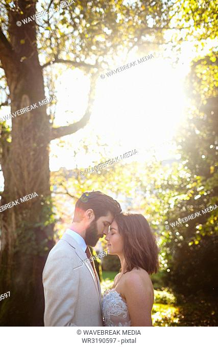 Romantic bride and groom embracing in the garden