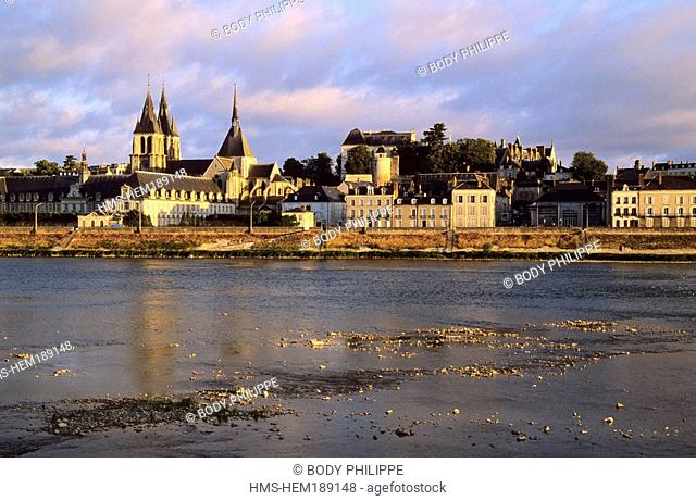 France, Loir et Cher, Loire Valley listed as World Heritage by UNESCO, Blois, quays and Saint Louis Cathedral in the background