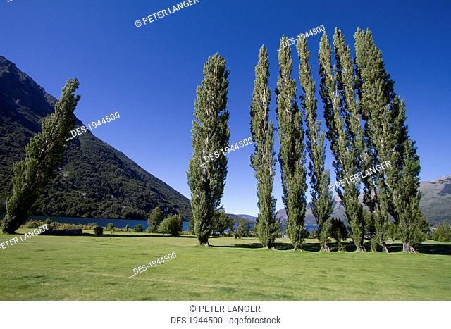 Gardens of Estancia Peuma Hue, Nahuel Huapi National Park, Rio Negro, Argentina
