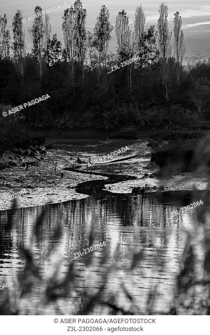 Black and white marsh landscape, Txingudi, Hondarribia, Guipuzcoa, Basque Country, Spain